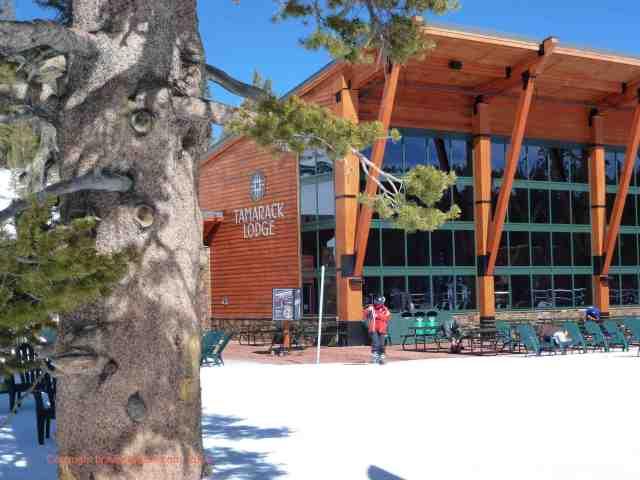 tamarack lodge heavenly ski