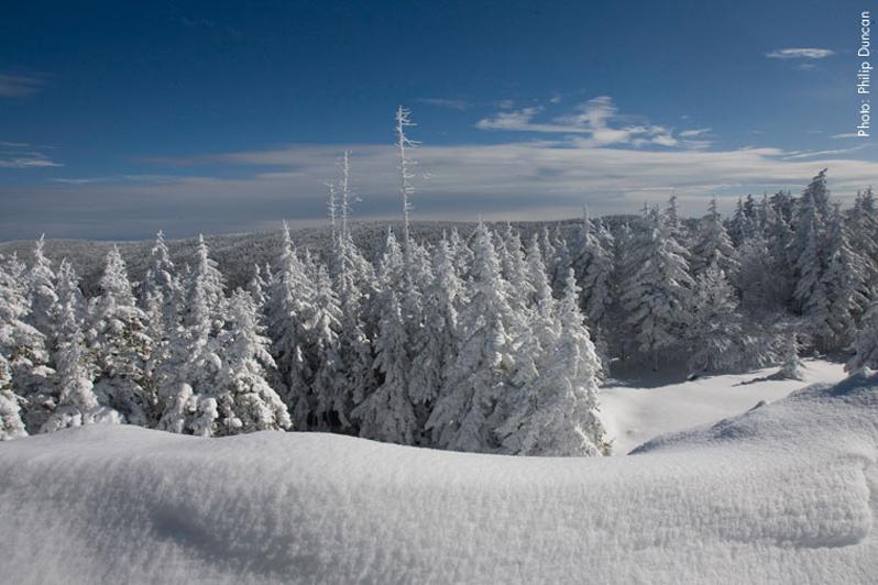 snowshoe west virginia powder landscape
