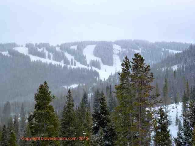 winter panorama vail