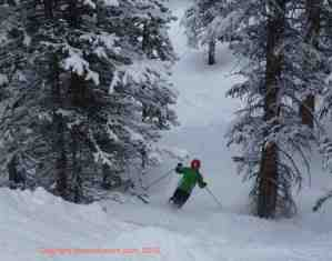 What's New At Snowmass? Gladed Skiing on Burnt Mountain, Ullr Nights and Two New Hotels