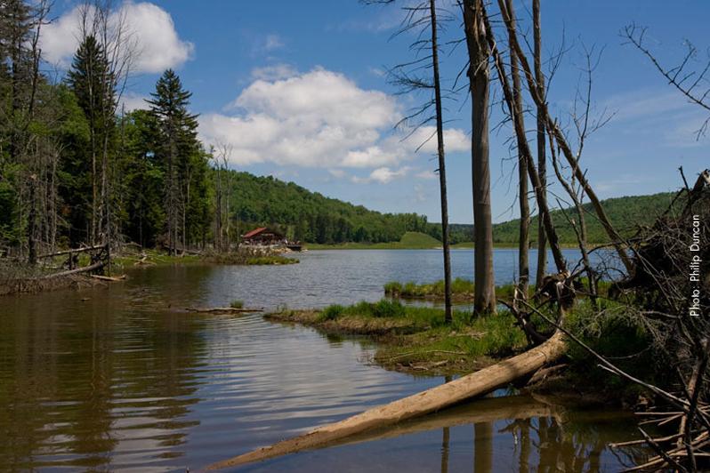 shavers lake snowshoe west virginia