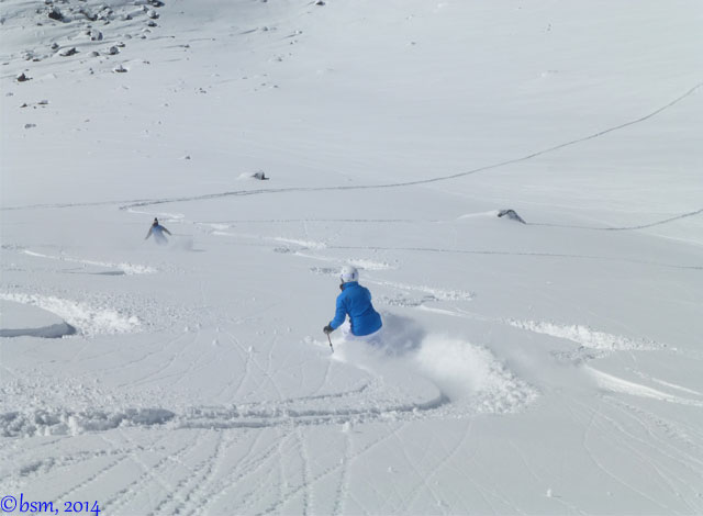 powder ski portillo