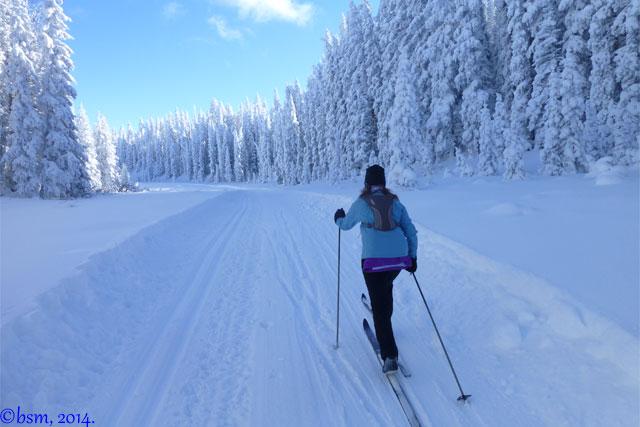 cross country skiing grand mesa