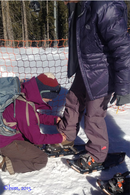 aces guided snowshoe hikes