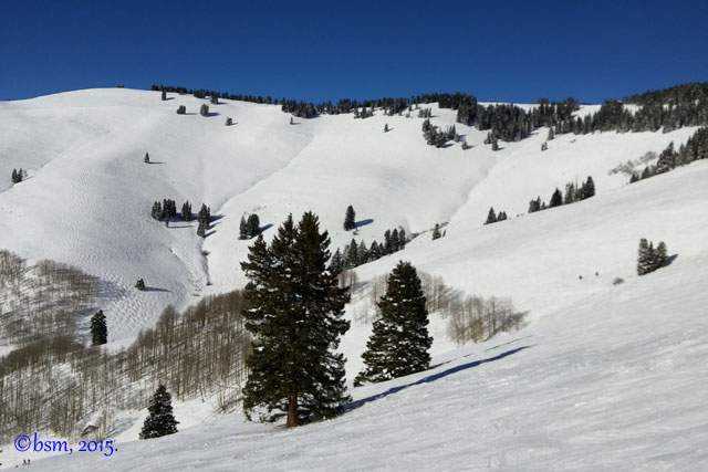 vail colorado skiing