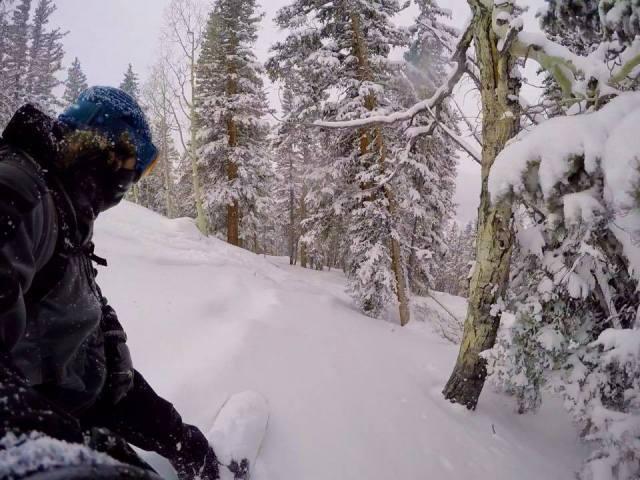 tree skiing eagle point utah
