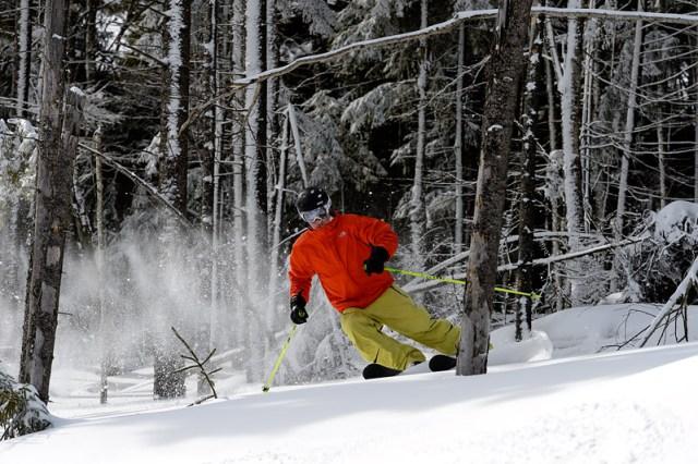 tree skiing snowshoe