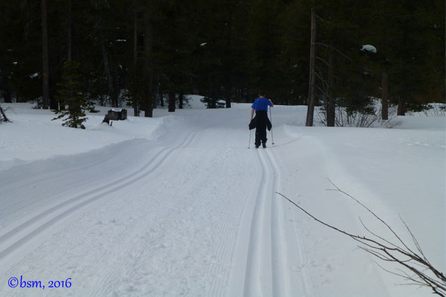 cross-country-ski-northstar