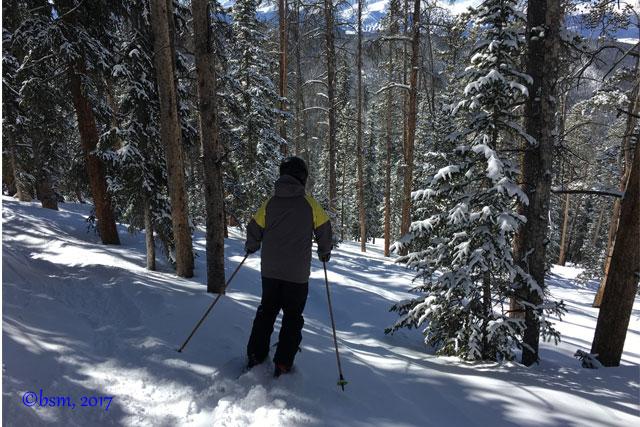 skiing-trees-at-keystone-resort-colorado