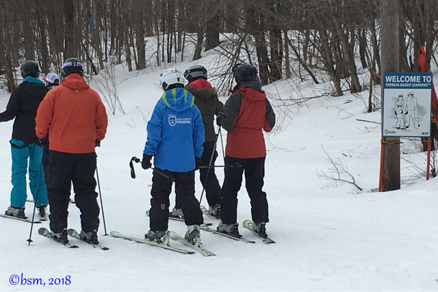 adult ski lessons killington terrain based learning