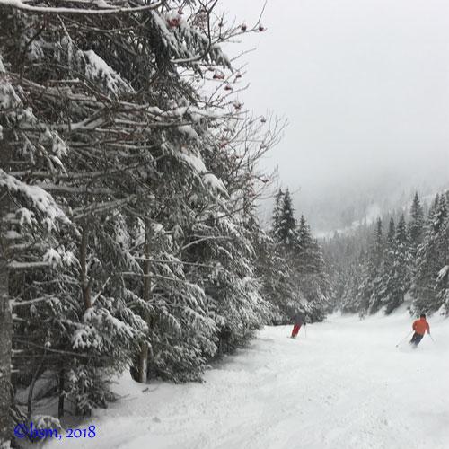 family skiing at Stowe
