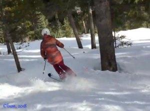 how to ski trees