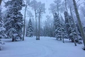 powder day at powderhorn mountain resort