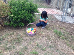 Aileen hunting eggs