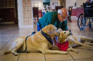 Dog Thearpy at Braybrook Assisted Living Facility