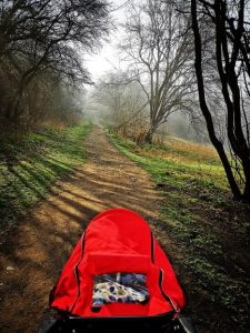 Confessions of an Award-Winning Blogger - running buggy