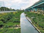 浮洲都市計畫 最快明年重啟