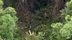 小飛機在聖保羅北部叢林墜毀