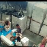 聖保羅警方查獲10萬假冒橄欖油