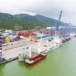 巴西2020年1-12月絲綢商品進出口情況