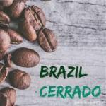 咖啡產區 | 巴西喜拉多 日曬處理直火烘焙巴西紅波旁的別樣風味