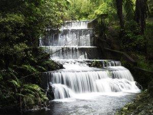 Wellington - Korokoro Dam Walk