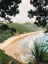 New Chums Beach - The Coromandel