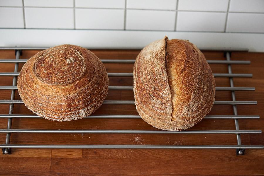 Fotografie cu cele doua paini cu maia, imediat după ce au fost scoase din cuptor