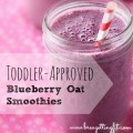 toddler approved blueberry oat smoothie