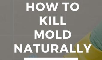 How To Kill Mold Naturally