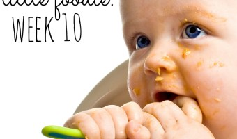 Mommy's Little Foodie: Week 10 + The Mesh Feeder Incident