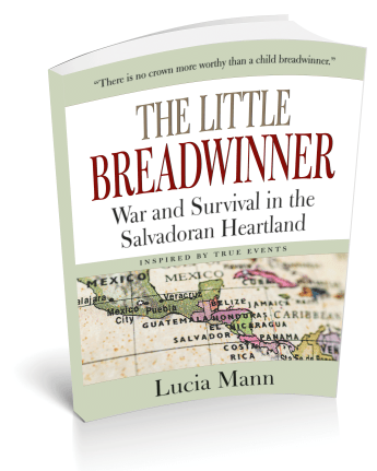 The Little Breadwinner - Front 3D Cover