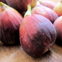 The first figs
