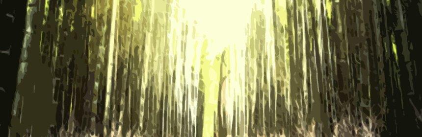 "Cover artwork for Taiyamo Denku Featuring Ras Kass - ""Far East"""