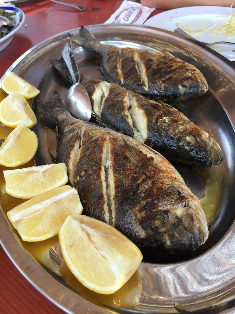 Fresh Fish In Croatia