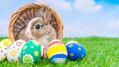 Photo of Top 4 Things You Didn't Know About Easter Holiday
