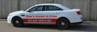 Bylaw Services Car