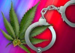 stop criminal control of pot shops