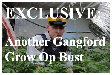 http://breakingthecode.ca/wp-content/uploads/2015/12/Langford-Grow-Op-Bust.jpg