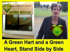 Lisa Helps' medical pot shops, by Hal Hannon