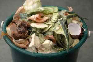 Compost Tea Recipe