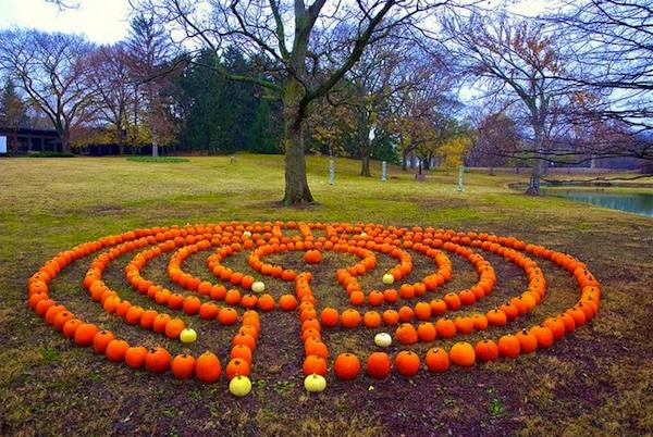 labyrinth flower garden designs DIY Backyard Breast Cancer Healing Garden Labyrinth Ideas