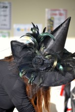 Witches Hat_fetterly