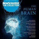 Cover of The Human Brain by New Scientist