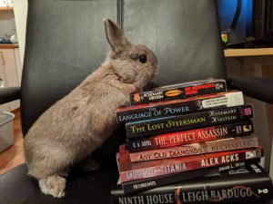 Pic of a small brown bunny standing up against a pile of books