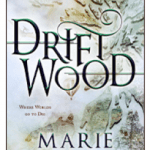 Cover of Drift Wood by Marie Brennan