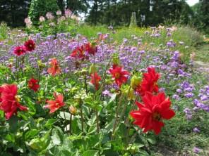 цветочный микс2