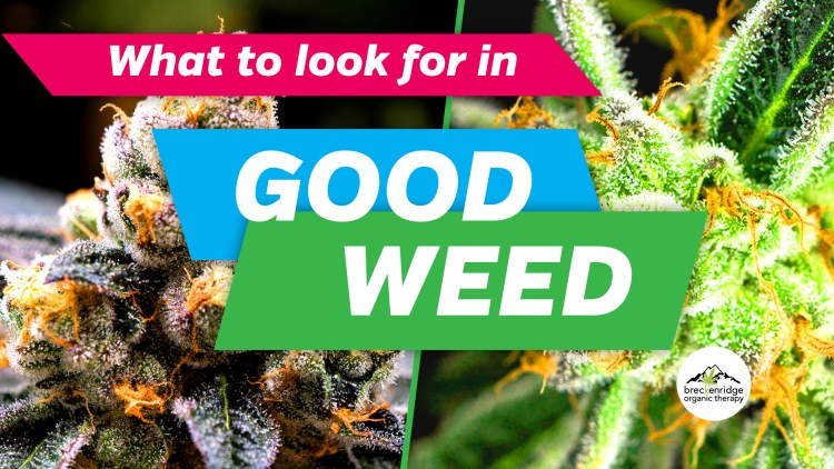 What to Look for in Good Weed Post image