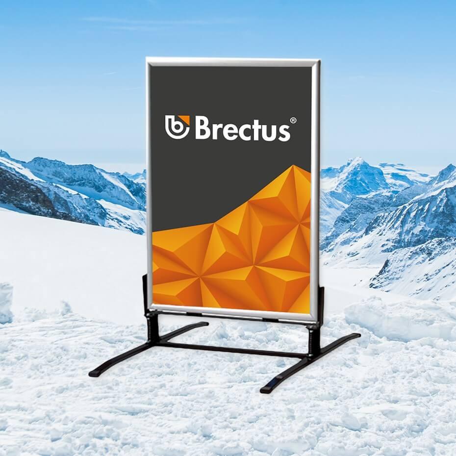 Brectus Gatebukk i vintermiljø