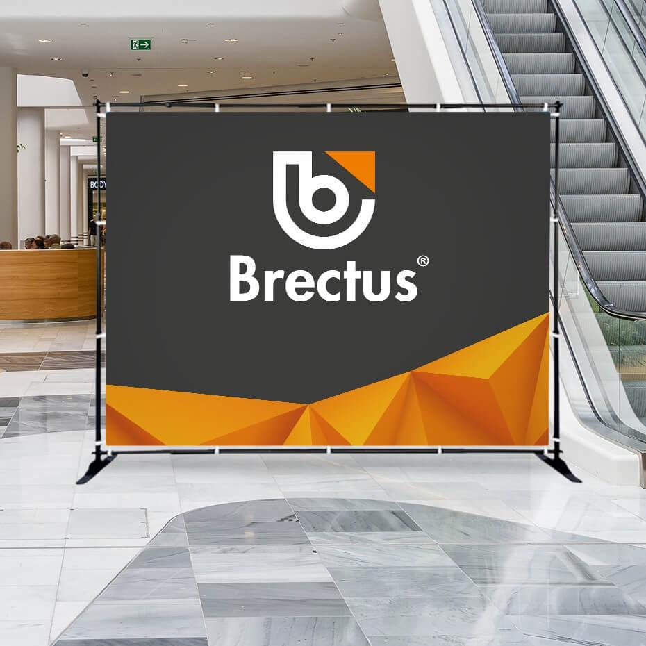 Romskille Brectus